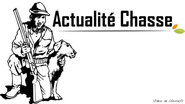 Actualité Chasse